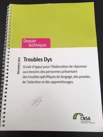 trouble dys dossier17.jpg